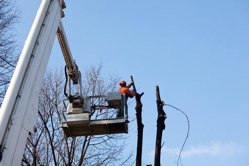 travaux en hauteur sur corde Ramonchamp